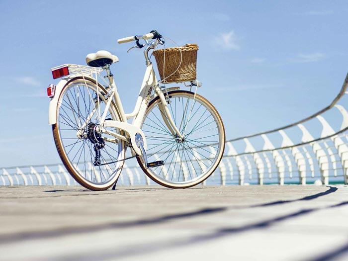 city retrò bicicletta da città