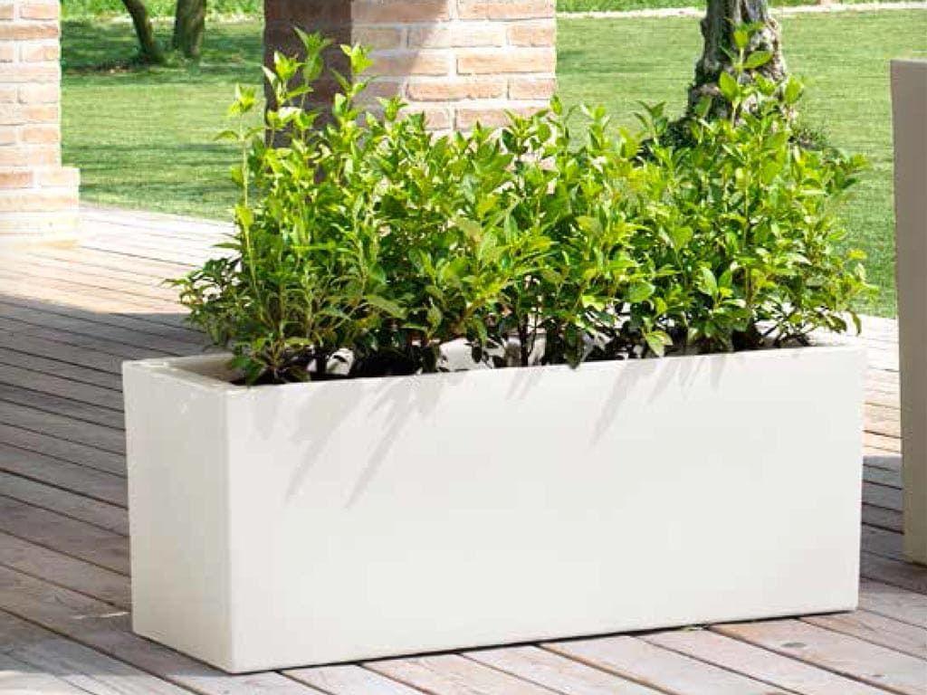 vaso piante plastica cassa